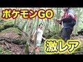 富士の樹海でポケモンGOをしたら超レアポケモンが現れた!!