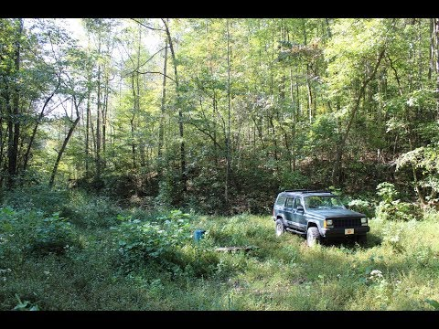 Remote TN Land With Power And Financing | SC-TR9