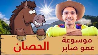 عمو صابر - الحصان - Amo Saber - The Horse