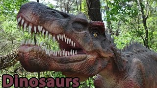 Dinosaurs: Giants Of Patagonia (Trailer) thumbnail