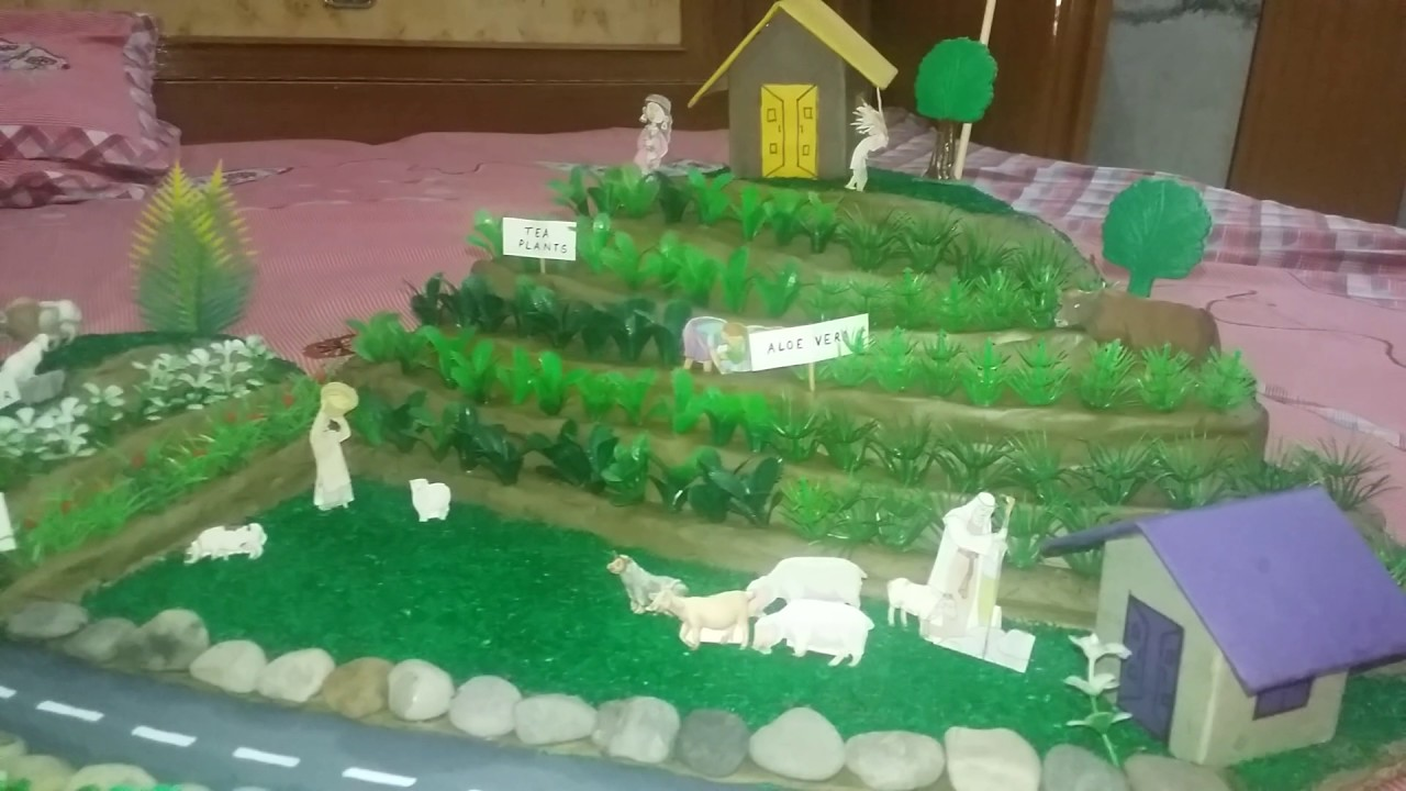 model of step farming in hills youtube