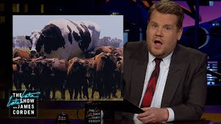 James Corden Has Big Eyes for the Big Cow