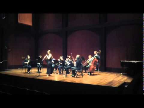 Carl Maria von Weber - Concertino for Oboe and Wind Band