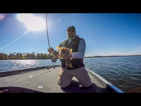Triggering Fall Smallmouths