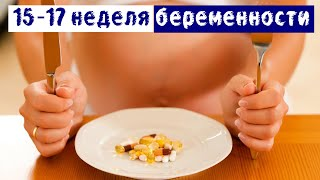 15, 16, 17 недели беременности: таблетки, врачи, пятки | Дневник беременности | Я беременна