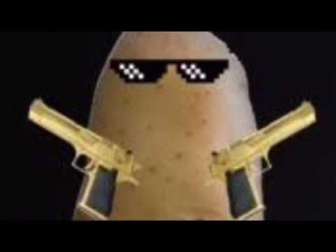 Patateslerin gücü adına