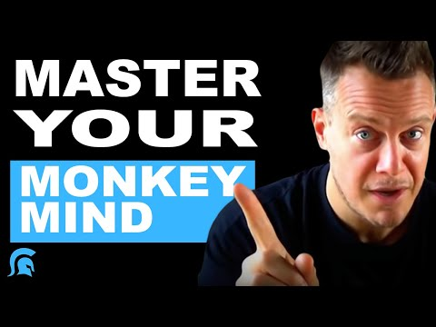 Exploring PTSD cures : calm the monkey, still the lizard and free the human