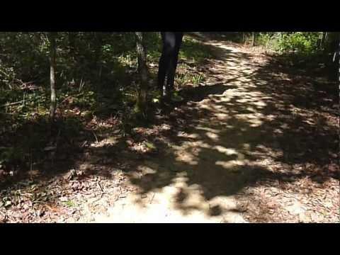 Veterans Park Mountain Bike Trail