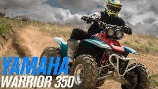 Yamaha Warrior 350 | ATV Overview