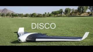 disco manual flight demonstation in palm springs