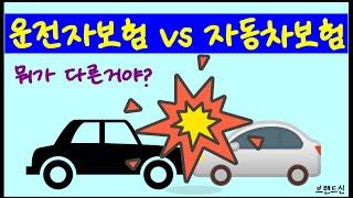 운전자보험 자동차보험 차이가 뭐죠? [브랜드신]