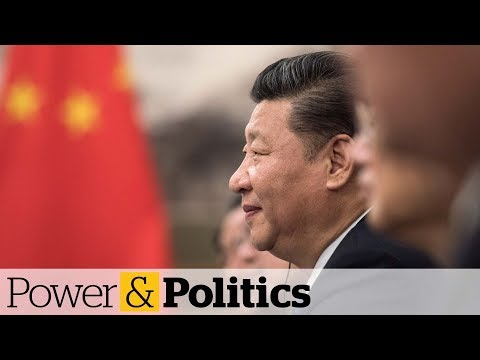 Canada could benefit from China-U.S. trade war | Power and Politics