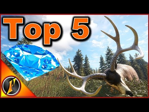 My Top 5 Biggest Diamonds In Call Of The Wild!
