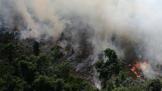 Incendios forestales en el Amazonas avanzan a una velocidad récord