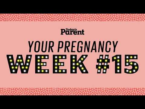 Your pregnancy: 15 weeks