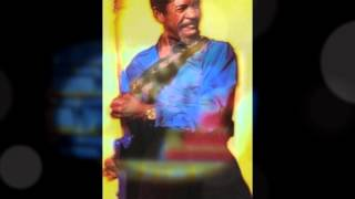 Watch Luther Allison Will It Ever Change video