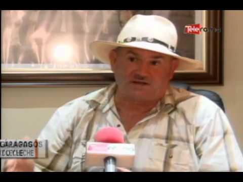 Ganaderos del litoral y Galápagos denuncian contrabando de ganado y leche