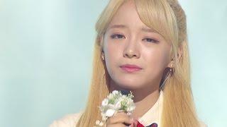 《MOURNFUL》 SEJEONG(gugudan) (세정(구구단)) - Flower way (꽃길) @인기가요 Inkigayo 20161204