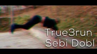 True3run Sebi Dobl 2016