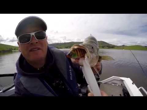 Lake Hume Fishing Produces Mixed Bag