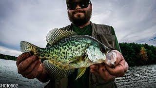 Camping\Fishing Glendale Lake in Prince Gallitzin State Park Pennsylvania - Worm Harness Panfish-ing