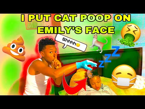PUT CAT POOP IN EMILY'S FACE WHILE SHE SLEEP ** THIS IS JUST THE BEGINNING**