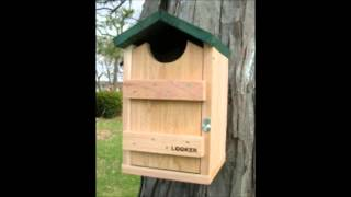 Bird House And Feeder Poles