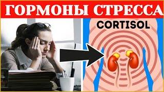 Гормоны стресса кортизол и адреналин. Источниками энергии для организма являются…