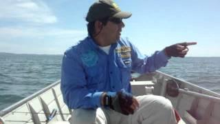 Pesca de Tucunaré - Lago de Sobradinho em Casa Nova - BA