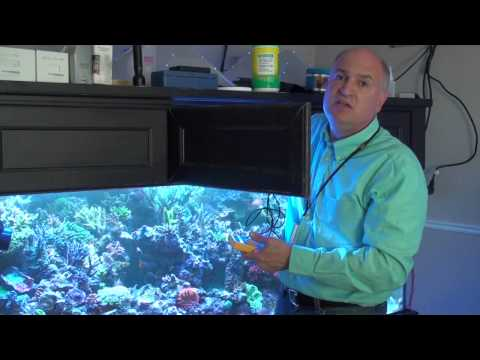 Reef Tank Lighting Fundamentals with Mike Paletta - ReefKeeping Video Podcast by AmericanReef
