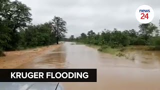 WATCH   Parts of Kruger National Park flooded after storm Eloise hits