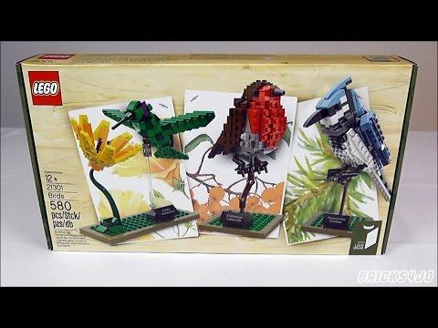 LEGO 21301 Ideas #009 Wildvögel - Review deutsch -