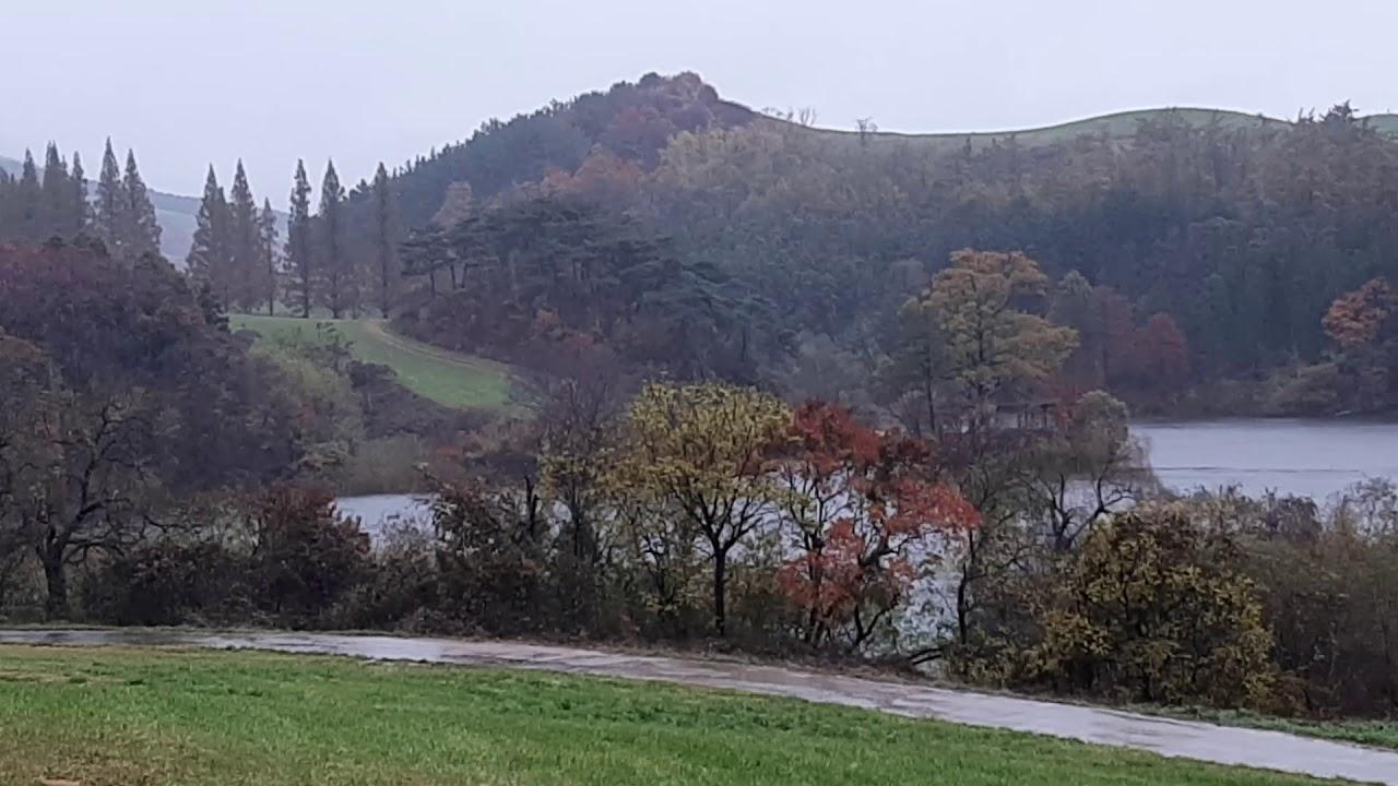 서산 용비지 와 서산 용유지는 같은저수지 가을 비오는날 풍경,South Korea tourist attractions