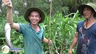 Chú Tín Và Mấy Anh Sài Gòn Trải Nghiệm Câu Cá Đầy Thú Vị | Hội Ngộ Miền Tây - Tập 111