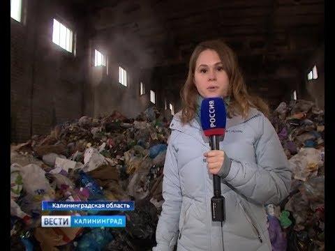 Под Правдинском в заброшенном здании экологи обнаружили горы гниющего токсичного мусора