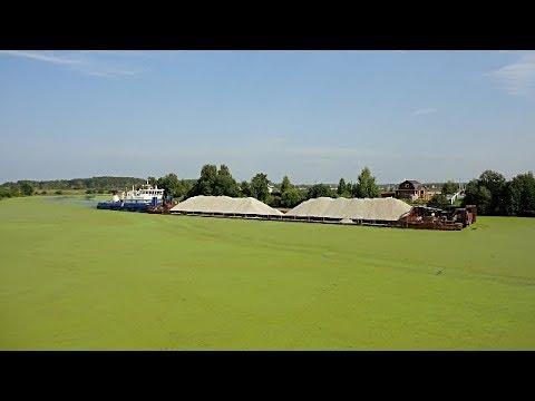 видео: Гости в нашем болоте..)