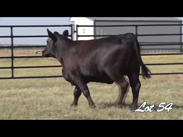 Pollard Farms Lot 54