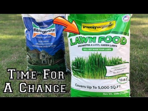 Purely Organic Lawn Food Spring Lawn Care Steps Best