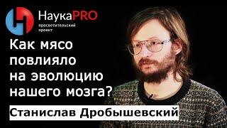 Станислав Дробышевский - Ускорение эволюции мозга вследствие перехода на мясную пищу