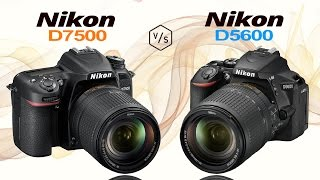 Nikon D7500 Vs Nikon D5600