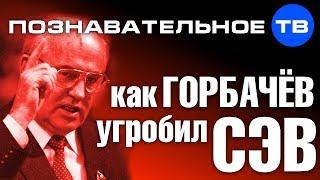 Как Горбачев угробил СЭВ (Познавательное ТВ, Николай Стариков)