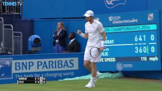Murray Hits Forehand Hot Shot At Queens 2016