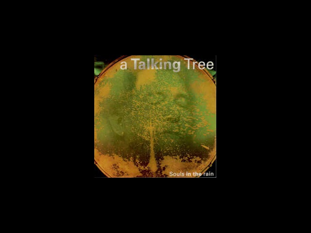 A Talking Tree - 3 Back door man