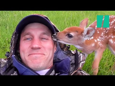 Man Saves Abandoned Baby Deer