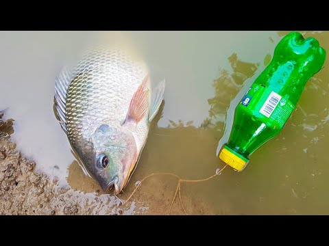 Amazing Boy Catch Fish With Plastic Bottle Fish Trap ! Fish Trap in Cambodia Method (Part-2)