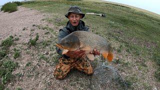 Ловля карпа осенью 2021 Озеро Тойганколь порадовал Трофейный карп Карпфишинг carp fishing