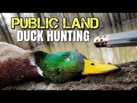 5 Keys To PUBLIC LAND Duck Hunting
