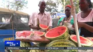 Kenya: Farmers switch from maize to watermelons in search of profits