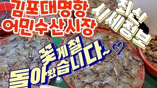 김포대명항 어민 수산시장 꽃게시세, 수산물시세 견문록 …
