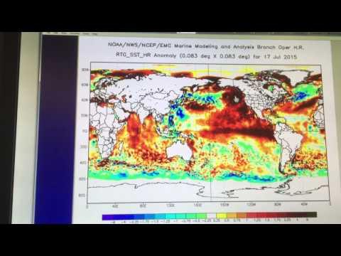 Climate Mayhem Update Part 1